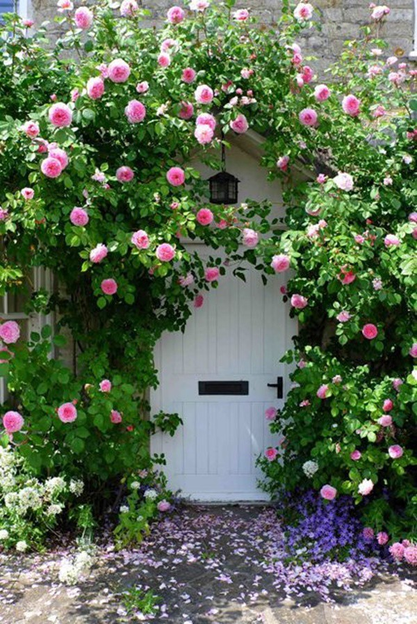 Chiêm ngưỡng vẻ đẹp lộng lẫy của những chiếc cổng nhà tràn ngập hoa - Ảnh 1.