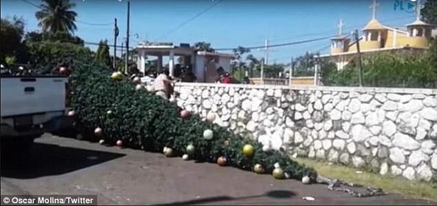 5 nạn nhân không may gặp nạn trong khi đang trang trí cây thông Noel.