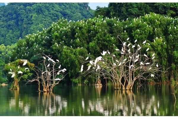 4 điểm du lịch cực nên thơ, đi mãi đi hoài vẫn không hết cảnh đẹp ở Ninh Bình - Ảnh 14.