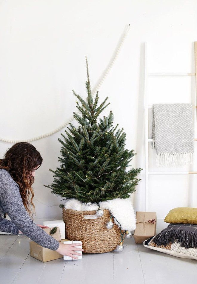 17 ý tưởng trang trí cây thông Noel mini đẹp, độc, lạ dành riêng cho nhà nhỏ  - Ảnh 12.