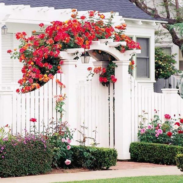 Chiêm ngưỡng vẻ đẹp lộng lẫy của những chiếc cổng nhà tràn ngập hoa - Ảnh 15.