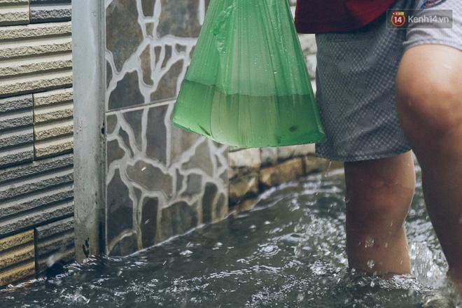 Cảnh tượng bi hài của người Sài Gòn sau những ngày mưa ngập: Sáng quăng lưới, tối thả cần câu bắt cá giữa đường - Ảnh 19.