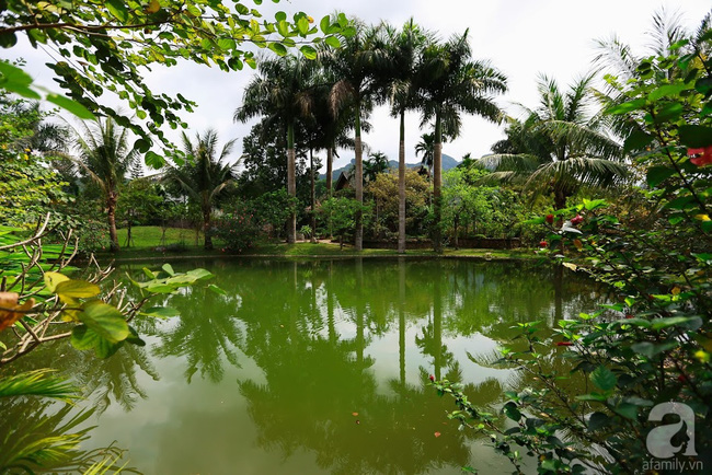 Nhà vườn xanh mát bóng cây, hoa nở đẹp cách Hà Nội 45 phút chạy xe - Ảnh 3