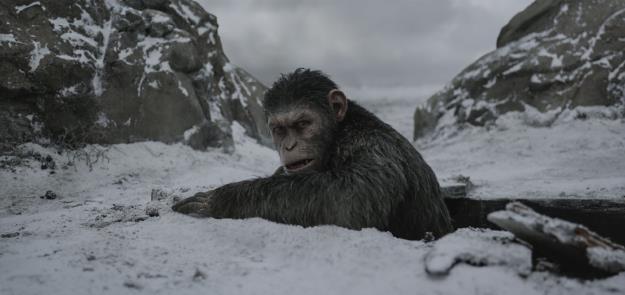 """Đại chiến hành tinh khỉ: """"Lọ muối"""" khiến bom tấn mùa hè bớt nhạt - Ảnh 3."""