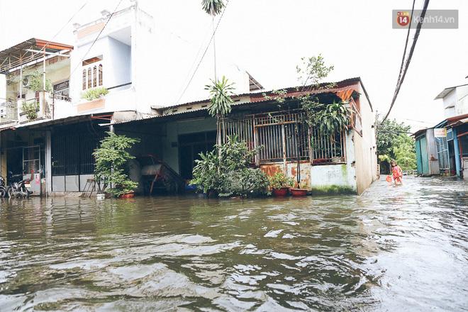 Cảnh tượng bi hài của người Sài Gòn sau những ngày mưa ngập: Sáng quăng lưới, tối thả cần câu bắt cá giữa đường - Ảnh 3.