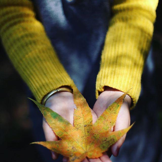 Mùa cưới đến rồi, bỏ túi ngay những địa chỉ chụp ảnh đẹp mê ly với lá vàng, lá đỏ này thôi - Ảnh 18.