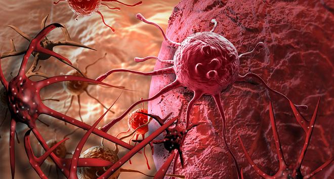 Phát hiện chất chống ung thư mạnh hơn thuốc 10.000 lần có trong loại gia vị ở Việt Nam 4