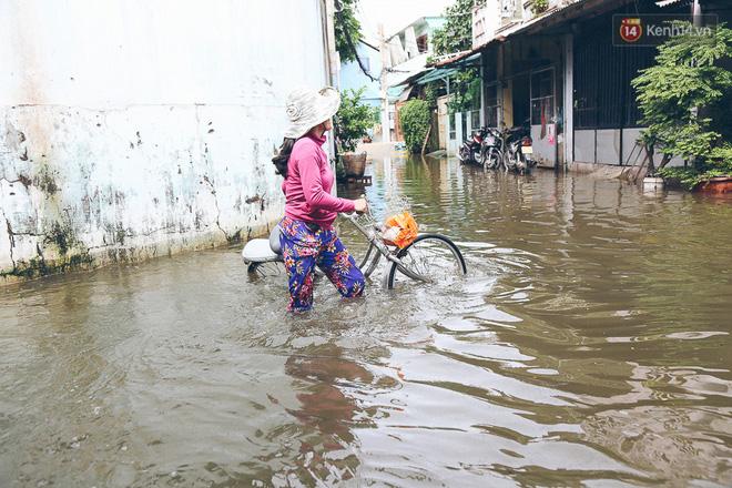 Cảnh tượng bi hài của người Sài Gòn sau những ngày mưa ngập: Sáng quăng lưới, tối thả cần câu bắt cá giữa đường - Ảnh 4.