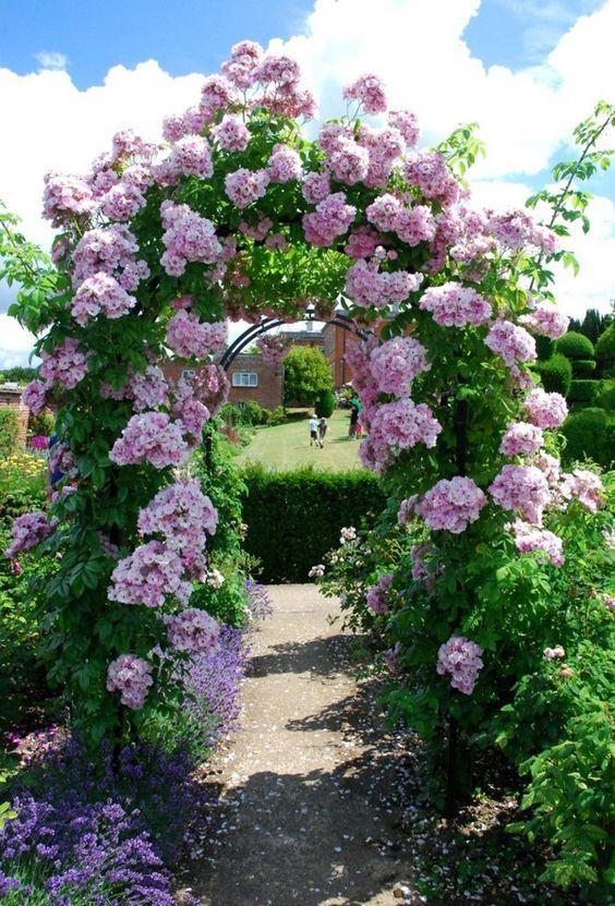 Chiêm ngưỡng vẻ đẹp lộng lẫy của những chiếc cổng nhà tràn ngập hoa - Ảnh 4.