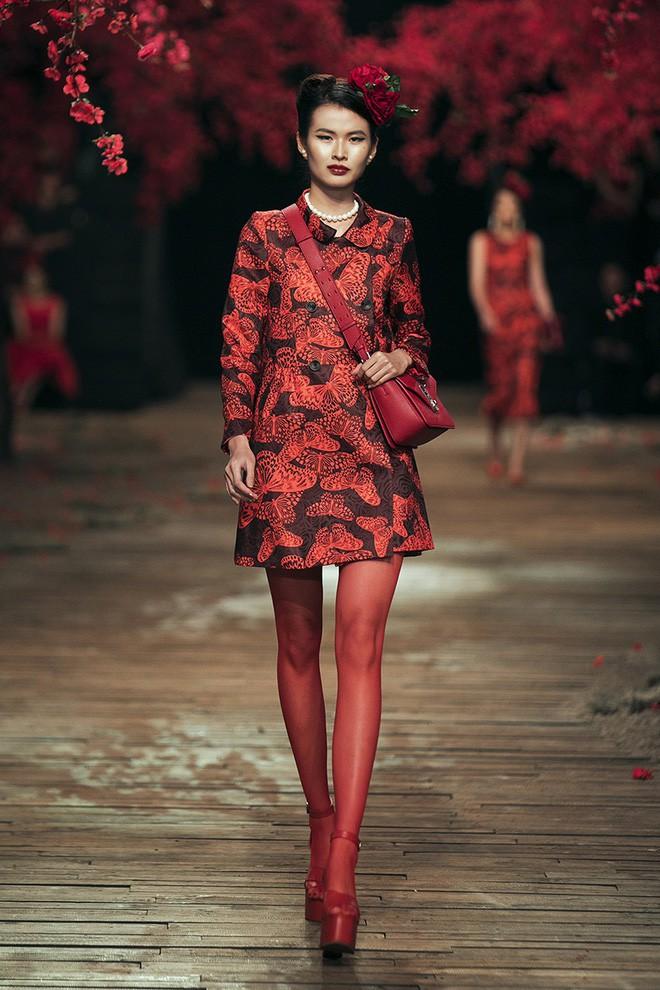 Đến tận ngày cuối cùng của năm 2017, Hoa hậu Kỳ Duyên vẫn phá đảo show diễn của NTK Đỗ Mạnh Cường - Ảnh 5.