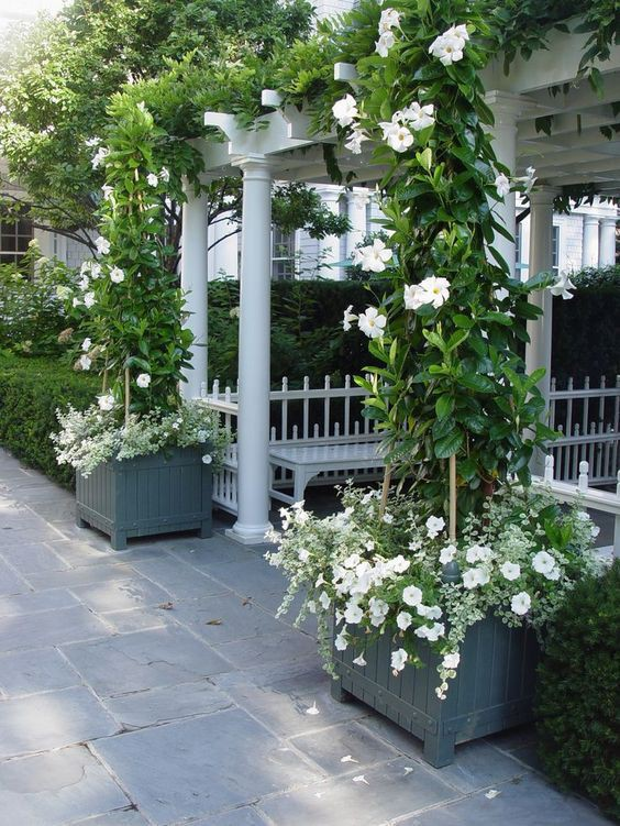 Chiêm ngưỡng vẻ đẹp lộng lẫy của những chiếc cổng nhà tràn ngập hoa - Ảnh 7.