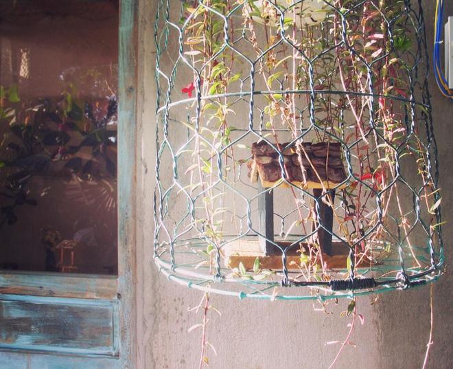Có một Đà Lạt rất dễ thương: Chủ homestay về quê, bạn muốn mua gì cứ tự lấy rồi để lại tiền dưới căn bếp - Ảnh 9.