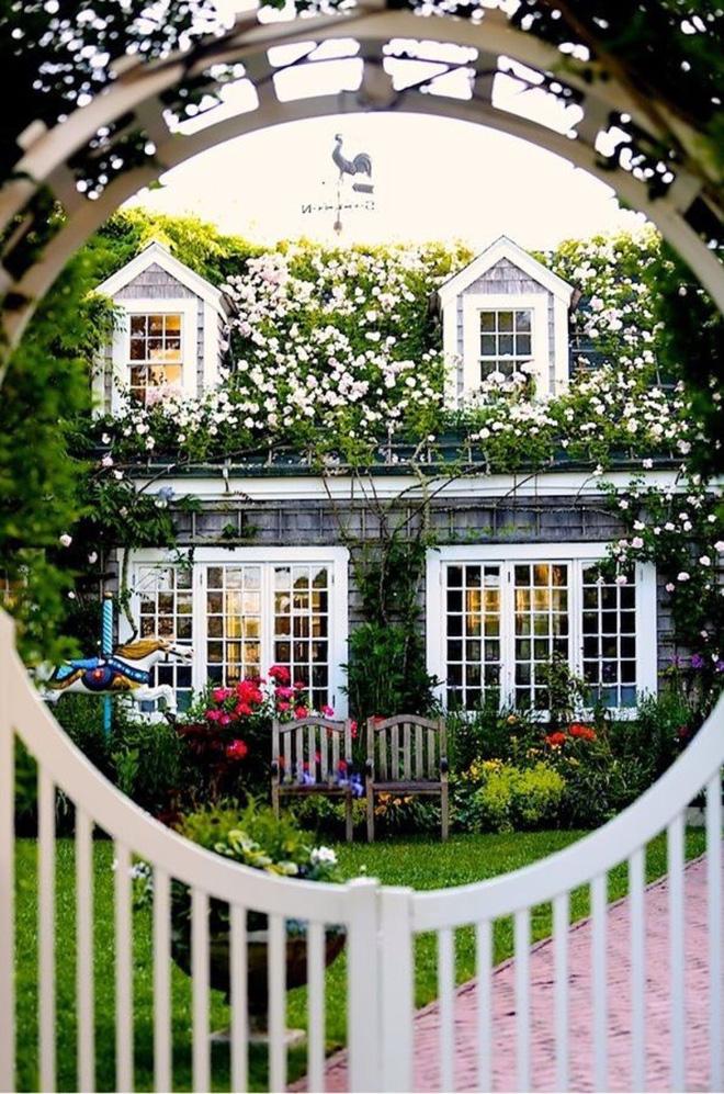 Mãn nhãn với những ngôi nhà có dàn hoa leo, ai đi qua cũng phải dừng chân ngắm nhìn - Ảnh 9.