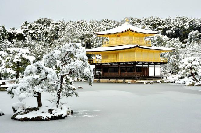 Ngất ngây với những hình ảnh tuyết rơi đẹp lung linh trên khắp thế giới - Ảnh 9.