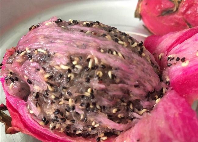 Mắt tròn mắt dẹt với những loại hạt mọc mầm đâm thủng quả để vươn ra - Ảnh 10.