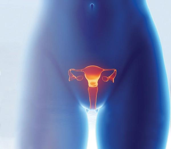 5 điều về suy buồng trứng sớm, là phụ nữ nhất định phải biết - Ảnh 4.