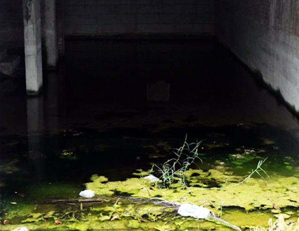 Chùm ảnh: Người dân sống cạnh ao tù, kênh rạch lo lắng khi sốt xuất huyết tăng nhanh ở Hà Nội - Ảnh 1.