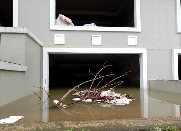 Chùm ảnh: Người dân sống cạnh ao tù, kênh rạch lo lắng khi sốt xuất huyết tăng nhanh ở Hà Nội - Ảnh 3.
