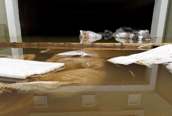 Chùm ảnh: Người dân sống cạnh ao tù, kênh rạch lo lắng khi sốt xuất huyết tăng nhanh ở Hà Nội - Ảnh 2.