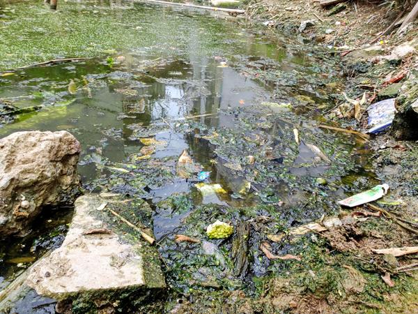 Chùm ảnh: Người dân sống cạnh ao tù, kênh rạch lo lắng khi sốt xuất huyết tăng nhanh ở Hà Nội - Ảnh 12.