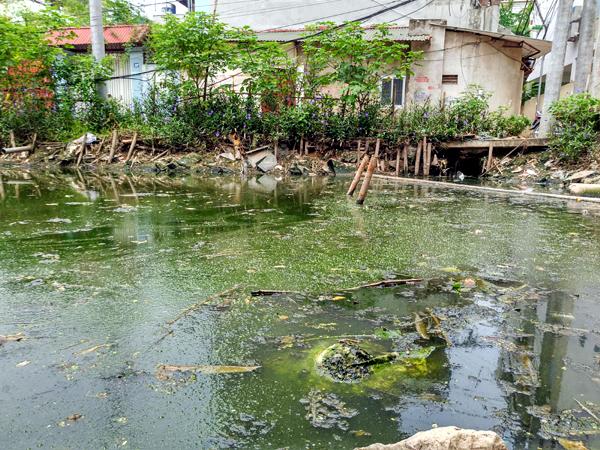 Chùm ảnh: Người dân sống cạnh ao tù, kênh rạch lo lắng khi sốt xuất huyết tăng nhanh ở Hà Nội - Ảnh 11.