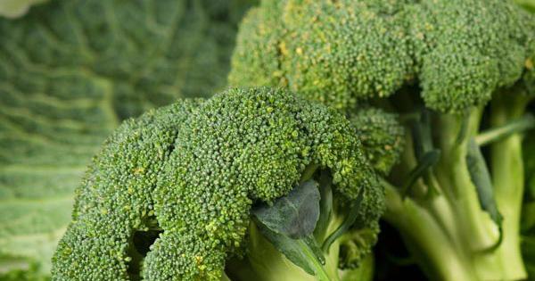 Nghiên cứu chứng minh, người thường xuyên ăn loại rau này ít có khả năng mắc bệnh tiểu đường - Ảnh 1.
