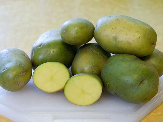 Đi chợ mà mua những rau củ kiểu này thì chỉ có rước họa về nhà, rước bệnh vào người - Ảnh 4.