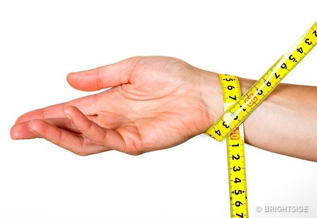 Cách giúp bạn biết chính xác mình thuộc tạng người nào để ăn uống và tập luyện phù hợp - Ảnh 2.