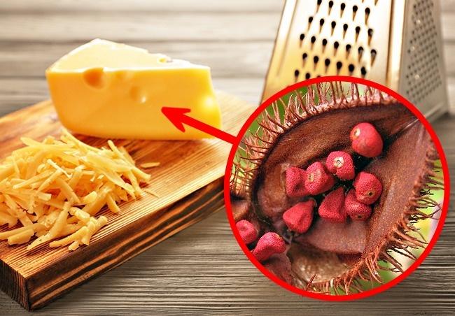 Những thành phần không thể ngờ có trong thực phẩm quen thuộc, số 8 sẽ khiến bạn giật mình - Ảnh 1.