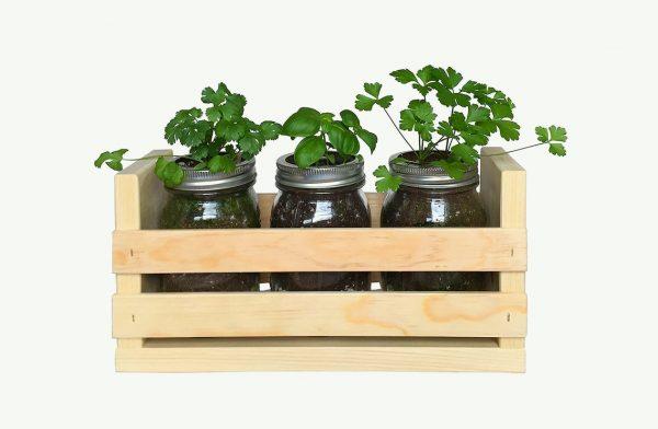 10 cách tạo ra vườn cây gia vị xinh xắn trong nhà phố bất chấp không gian chật hẹp - Ảnh 10.