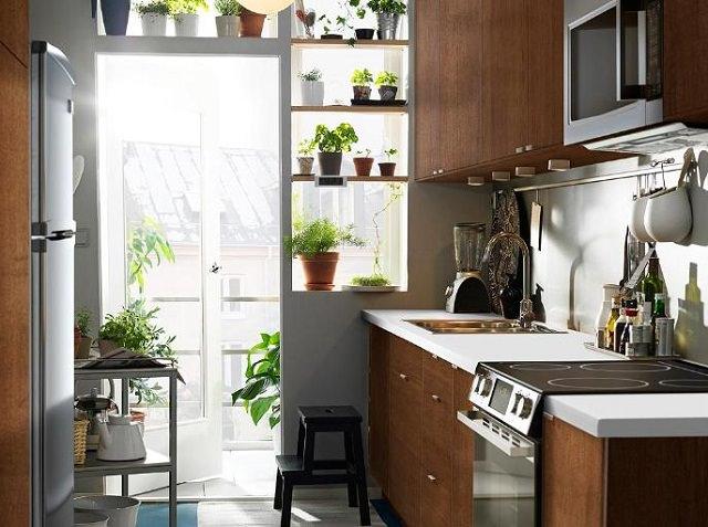 Trồng cây trong nhà bếp vừa trang trí vừa giúp bạn ăn ngon hơn, sống khỏe hơn - Ảnh 4.