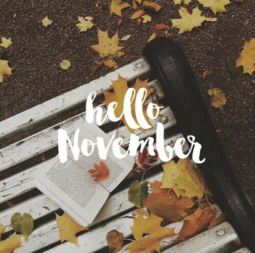 Tháng 11 này, 5 cung Hoàng đạo sau sẽ có tình yêu ngọt ngào và thăng hoa - Ảnh 1.