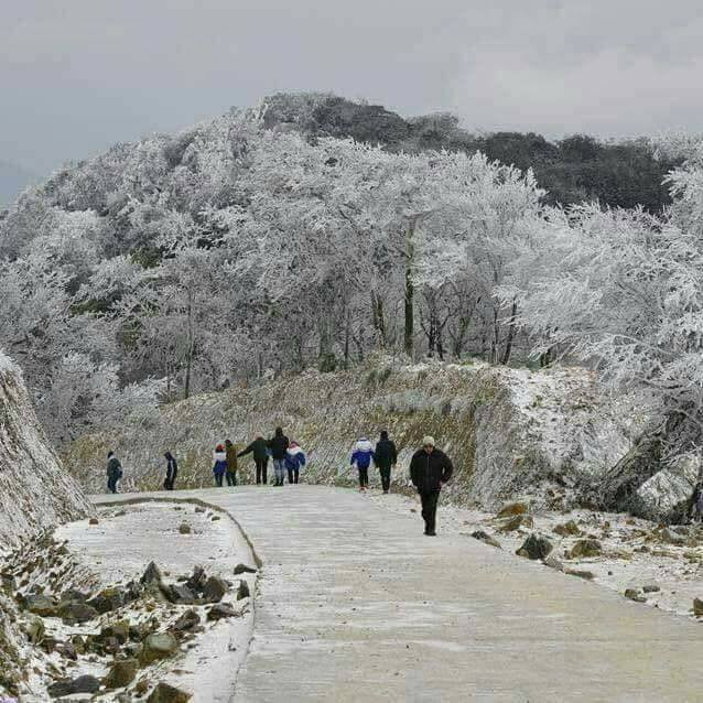 Những hình ảnh đầu tiên về băng giá trên vùng núi Cao Bằng đẹp lung linh như trời Âu - Ảnh 6.