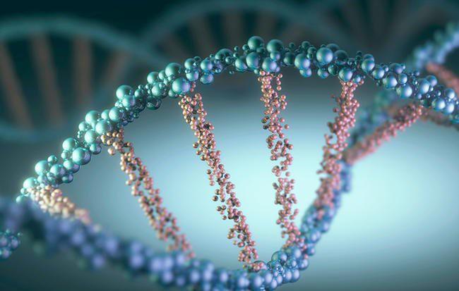 Những sự thật gây sốc về xét nghiệm ung thư vú BRCA - Ảnh 1.