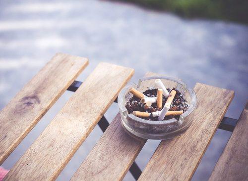 11 thay đổi trong lối sống mà bạn có thể làm ngay từ hôm nay để phòng bệnh ung thư phổi - Ảnh 2.
