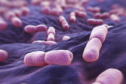 Những vị trí tưởng sạch nhưng chứa đầy vi khuẩn trong bếp nhà bạn - Ảnh 4.