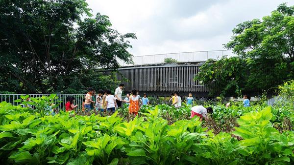 Cận cảnh ngôi trường mầm non ở Đồng Nai được xếp hạng đẹp nhất thế giới - Ảnh 21.