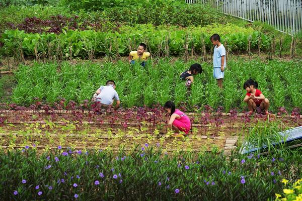 Cận cảnh ngôi trường mầm non ở Đồng Nai được xếp hạng đẹp nhất thế giới - Ảnh 22.