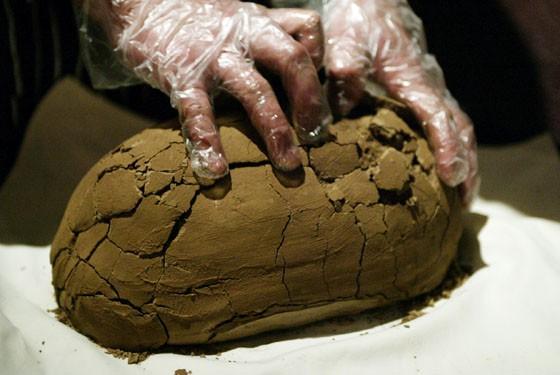 Đặt tảng bùn khô lên bàn ăn, khách khứa nhăn nhó nhưng khi nếm thử phải khen hết lời - Ảnh 2.