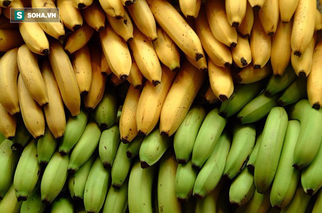 5 thực phẩm được ví như thần hộ mệnh của dạ dày: Chợ Việt vừa nhiều vừa rẻ! - Ảnh 1.