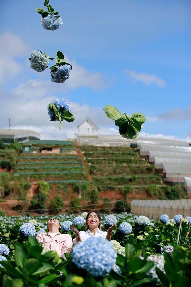 MC Hoàng Linh hạnh phúc như cô gái lần đầu biết yêu trong bộ ảnh cưới tại vườn cẩm tú cầu Đà Lạt - Ảnh 15.