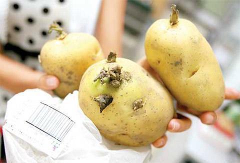 Muốn tốt cho gan: 2 loại quả nên ăn nhiều và 2 loại củ quả không nên ăn - Ảnh 3.