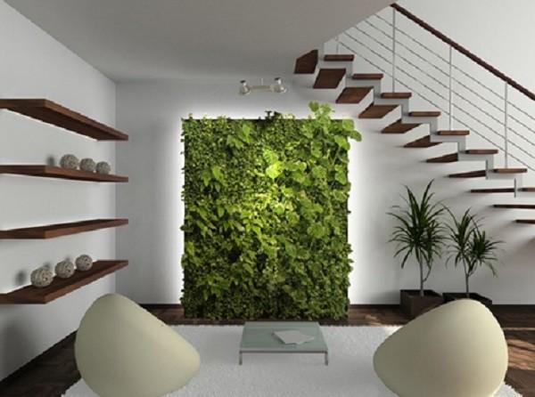 5 sai lầm cần tránh khi trồng cây trong nhà để không ảnh hưởng đến sức khỏe - Ảnh 2.