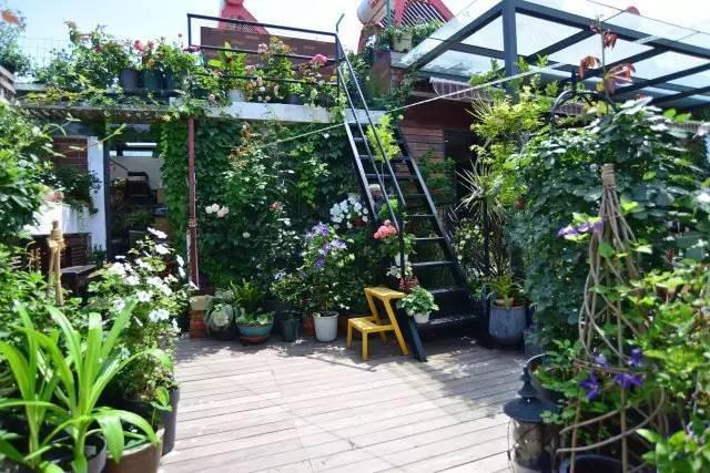 Bà mẹ đơn thân cùng con gái 5 tuổi dành trọn hai năm để biến sân thượng thành khu vườn đẹp như cổ tích - Ảnh 1.