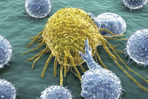 Bác sĩ BV K nói về liệu pháp điều trị ung thư đang áp dụng tại Việt Nam giá 120 triệu đồng - Ảnh 1.