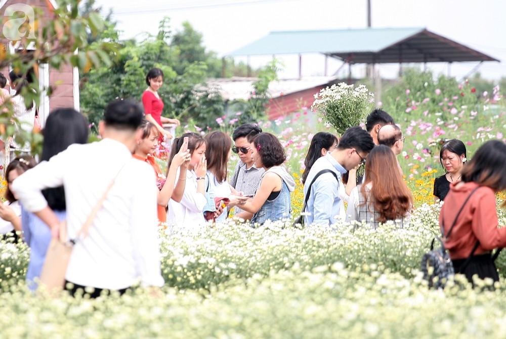 Phụ nữ, trẻ em chen nhau tạo dáng chụp ảnh kín đặc vườn cúc họa mi Nhật Tân - Ảnh 4.