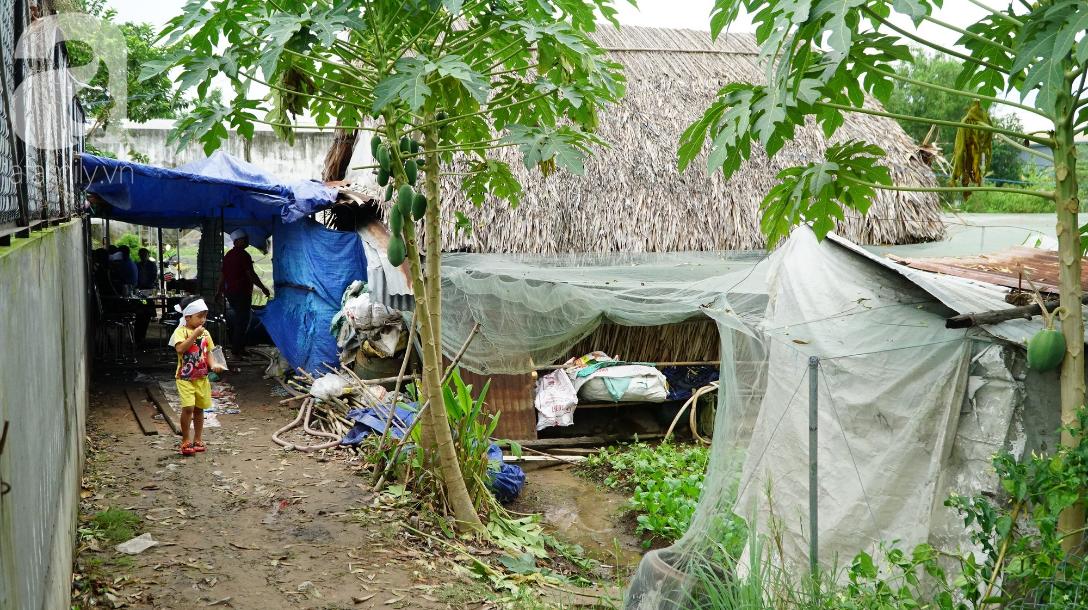 TP.HCM: Bố chết đuối khi cứu vườn rau trong bão, 3 đứa trẻ ngây ngô hỏi: Sao bố ngủ lâu quá không dậy hả mẹ? - Ảnh 5.