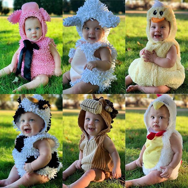"""Cuộc sống siêu bận rộn của gia đình sinh 6 em bé """"đẹp tựa thiên thần - Ảnh 7."""