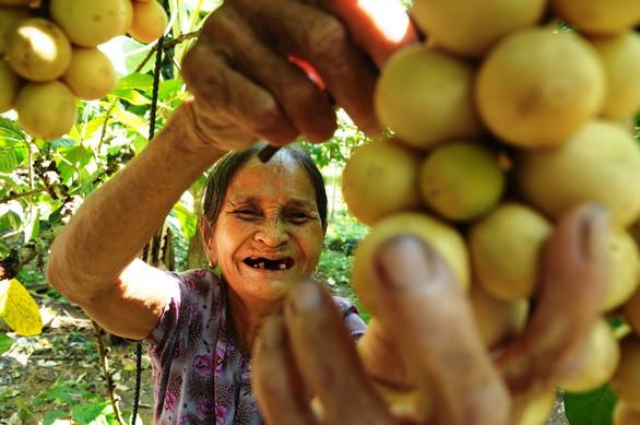Bòn bon xứ Quảng: từ quả rừng quê nghèo trở thành cực phẩm nam trân vì có công cứu đói vua Gia Long - Ảnh 1.