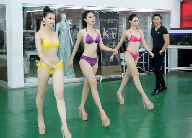 Không chỉ đạt thành tích cao nhất, Tân Hoa hậu Phương Khánh còn chặt chém hơn hẳn các người đẹp khác ở điểm này - Ảnh 2.